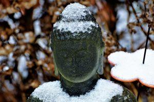 boeddha mind