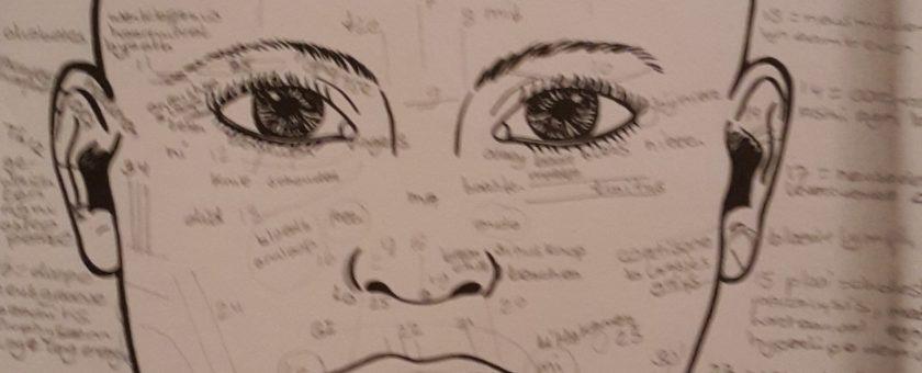 ayurveda gezichtsdiagnose